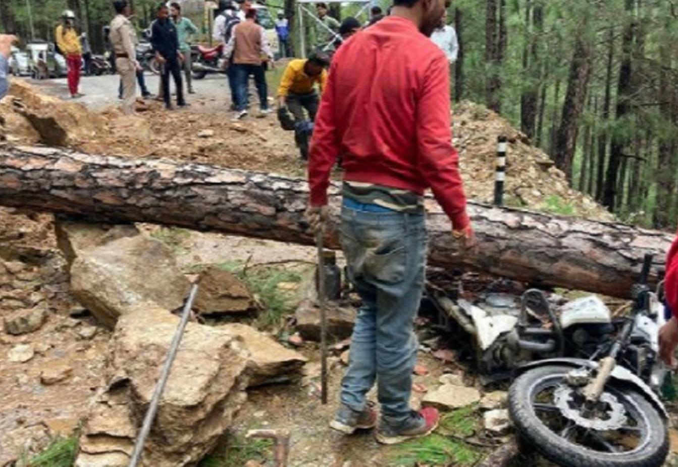 बाइक सवार युवक पर गिरा पेड़, घायल